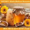 GROSIR !! WA : 0813-3211-8791 (Tsel) Grosir Sarang Madu Murni Di Malang By MALISSA (29007594) di Kota Malang