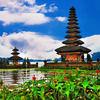 Paket Tour Bali Untuk Umum Libur Lebaran 15 - 19 Mei 2021 Special Dinner Jimbaran (29247997) di Kab. Sidoarjo