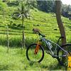 Wisata Sepeda Keliling Jogja - Desa Wisata (30982625) di Kota Yogyakarta
