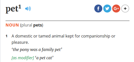 What is a Pet? Oxford Dictionaries