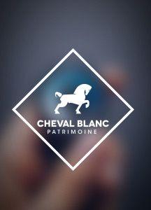 Stratégie Financière - Cheval Blanc Patrimoine