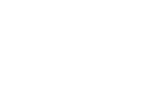 Vertex Logical Solutions