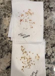 Seed Harvesting Technique