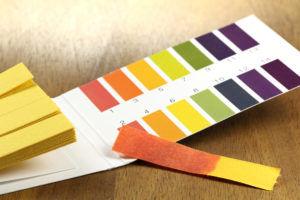 pH Strips for fermented vegetables