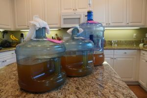 Three batches of mead using different yeasts