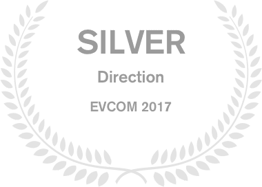 Image of Silver Direction EVCOM 2017