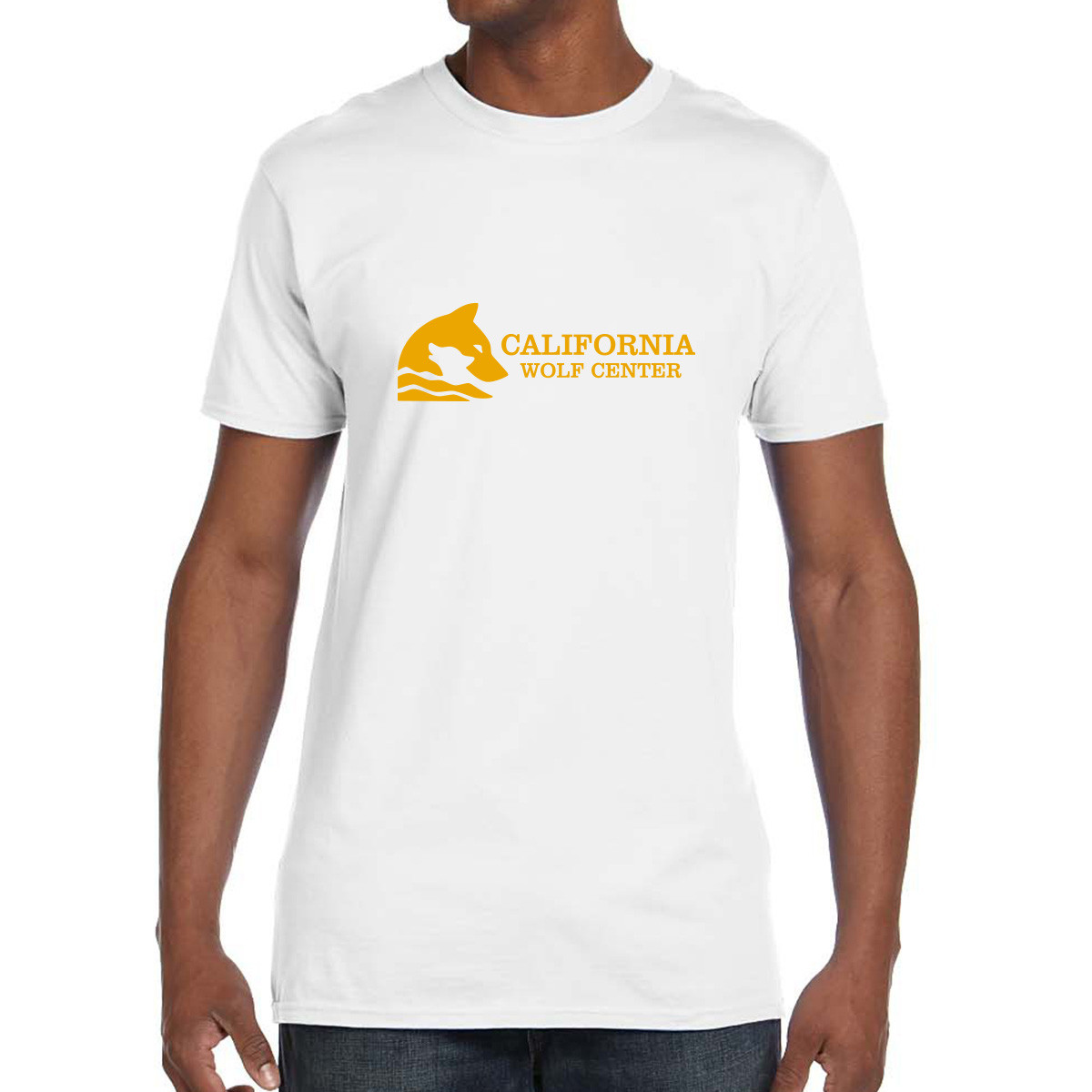 Hanes ® Men's Nano-T ® Cotton T-Shirt
