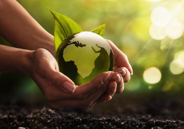 Impactful Eco Logo Merch