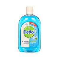 Dettol Disinfectant Menthol Cool Liquid Image