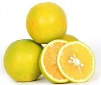 DB Sathukudi (sweet lime) Image