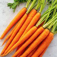 DB Carrot Image