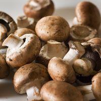 Real Button Mushroom Image