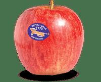 DB Royal Gala Apple Image