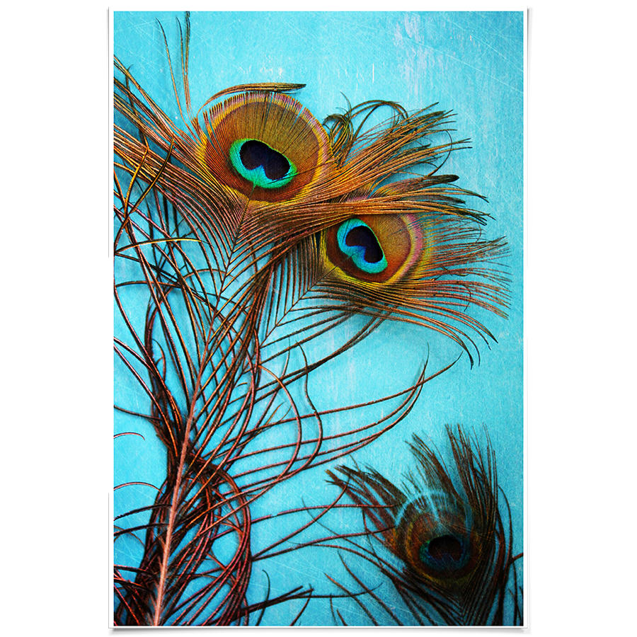 Dailyobjects 3 Pea Feathers Small Wall Art Print