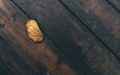 DECK REFINISHING: 7 TIPS FOR HOW TO RESTORE A DECK AFTER A ROUGH WINTER