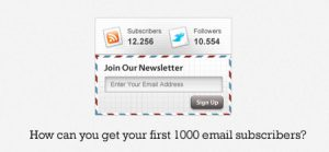 How Can You Get Your First 1,000 Email List Subscribers?