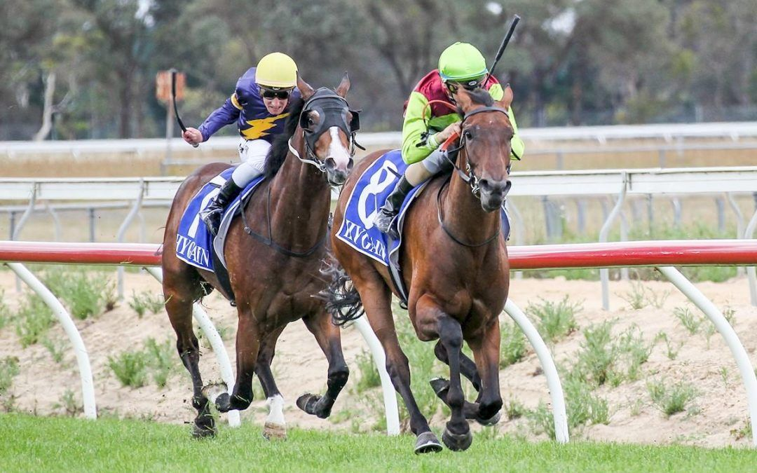 Street Icon Wins On Debut