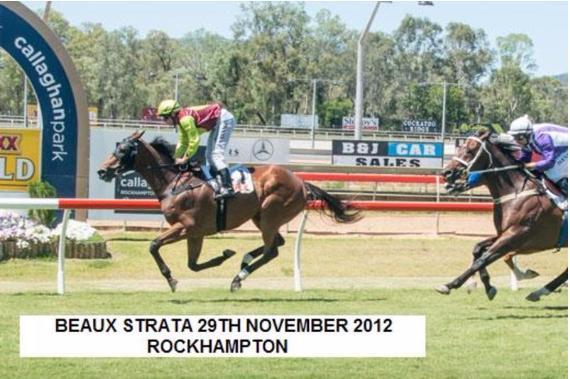 Beaux Strata | Rockampton QLD