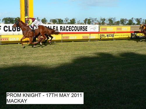 Prom Knight | Mackay QLD