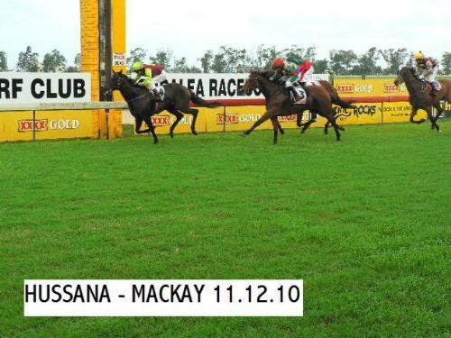 Hassana | Mackay QLD