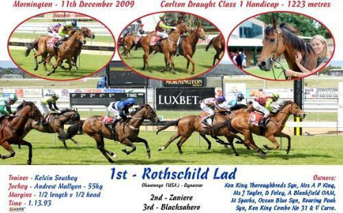 Rothschild Lad | Mornington VIC