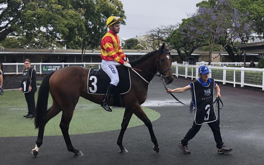PROMISING 2YO FILLY TO LINE-UP AT DOOMBEN