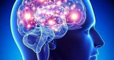 Sociedad Neurología debate sobre encefalopatía epiléptica