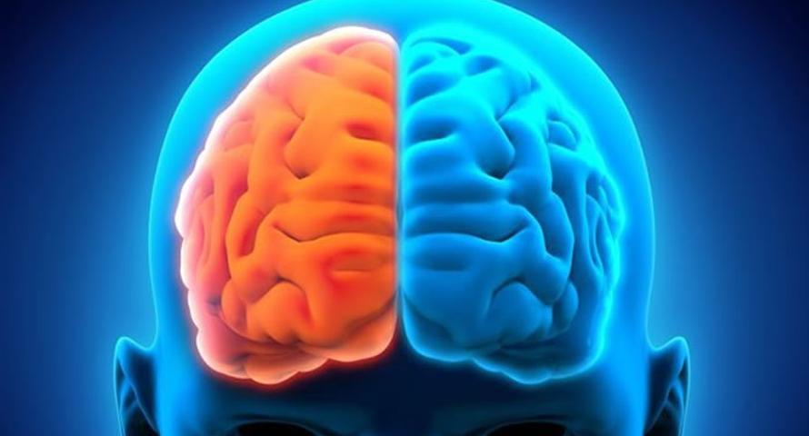 Neurólogo advierte sobre daños que puede causar el estrés al cerebro