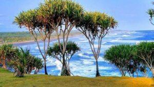 Karang Tawulan Pantai