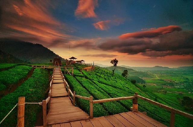 Wisata Terdekat Bandung - Wayang Windu