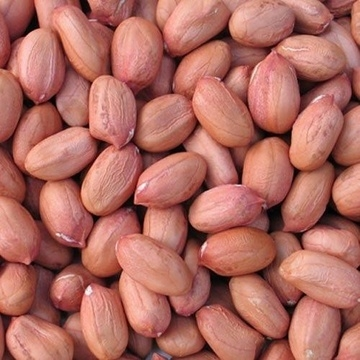 groundnuts-1-kg