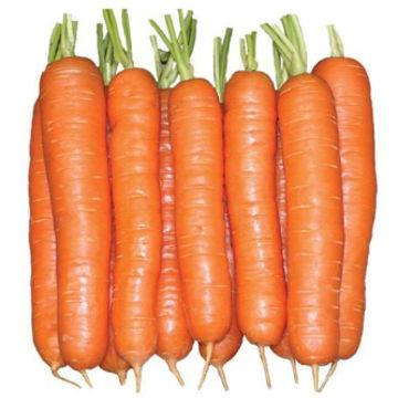 hybrid-carrot-1-kg