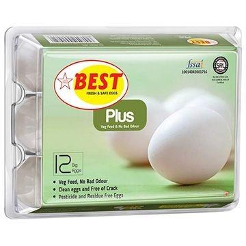 best-egg-plus-pack-of-6