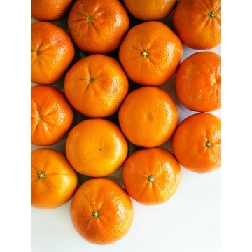 mandarin-orange-1-box