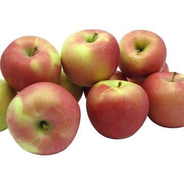 apple-fuji-fresh-6-pcs