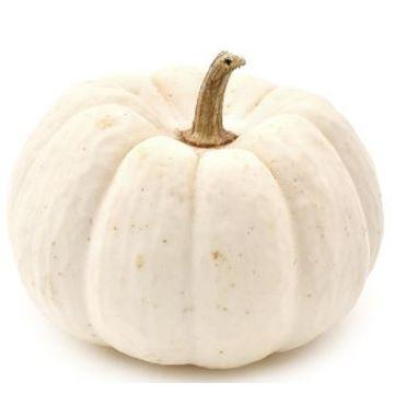 white-pumpkin-1-pc