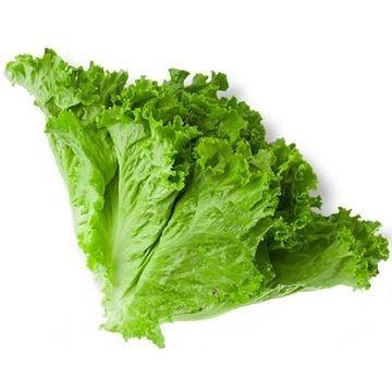 green-lettuce-1-kg
