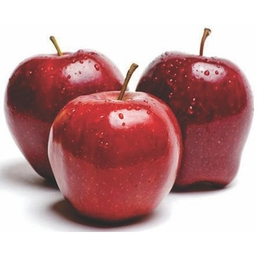 apple-washington-6-pcs
