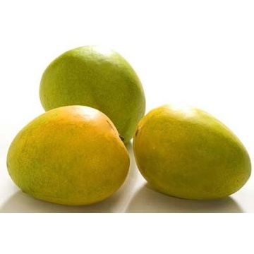 fresh-neelam-mango-2-kgs