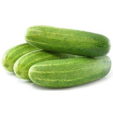 regular-cucumber-5-kgs
