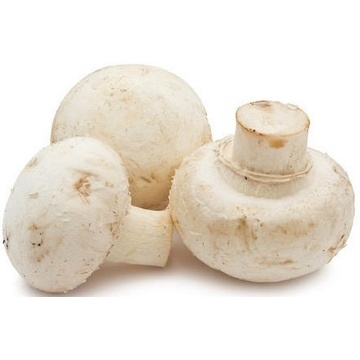 button-mushroom-pack-of-5