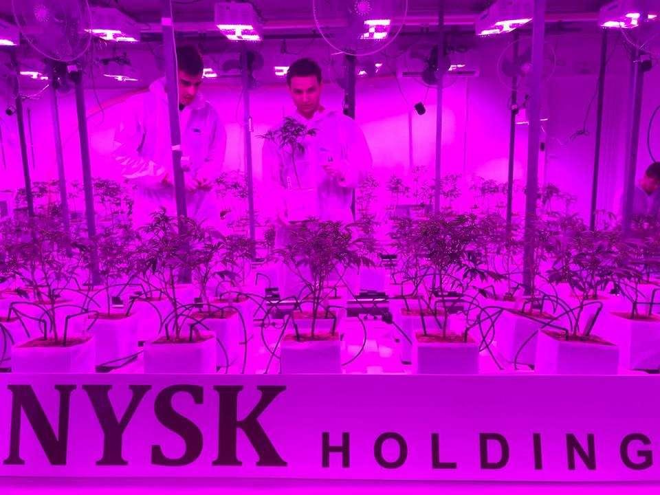 NYSK Holding
