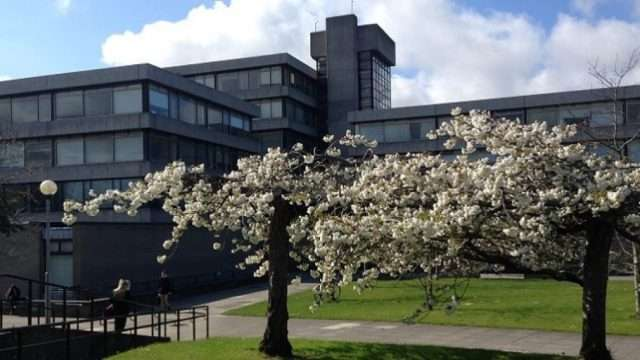 SPIRe-Doctoral-Scholarships-for-EU-and-Non-EU-Students-at-UCD-in-Ireland.jpg