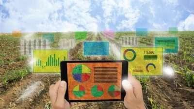 Во Србија се отвора првата дигитална фарма