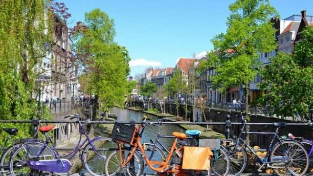 netherlands-bikes.jpg