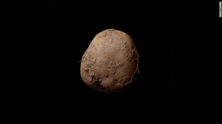 OnePlus 5 Kamera: Eine-Million-Dollar-Kartoffel-Fotograf mit Tipps, wie man gute Portraits macht techboys.de • smarte News, auf den Punkt!