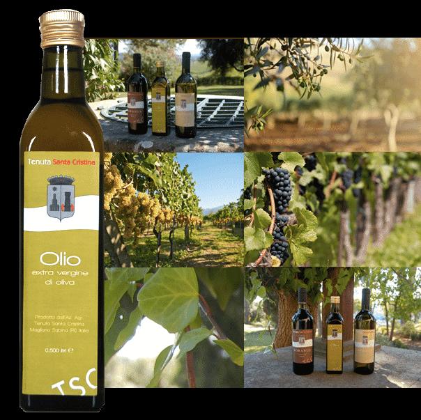 Prodotti della Tenuta Santa Cristina in Sabina: Olio extra vergine d'oliva