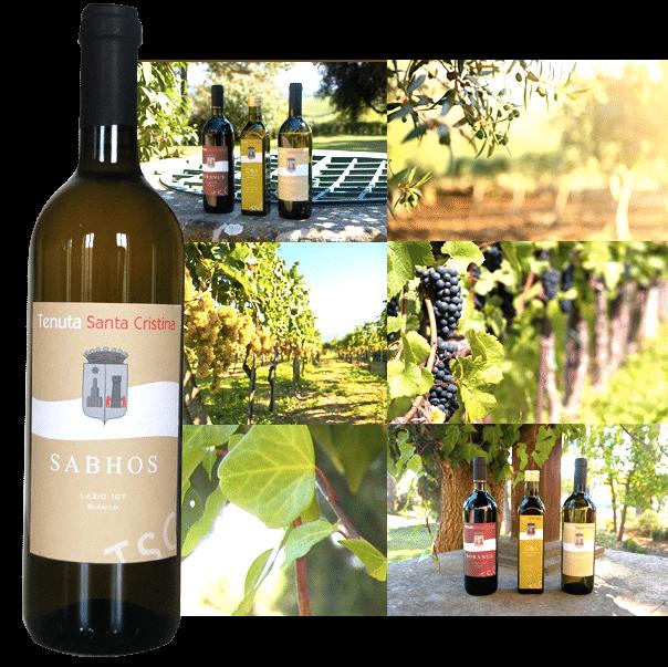 Sabhos Vino Bianco