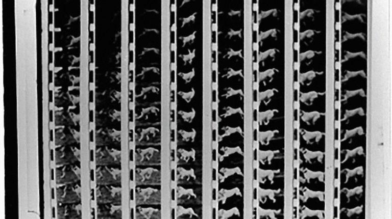 Film Display
