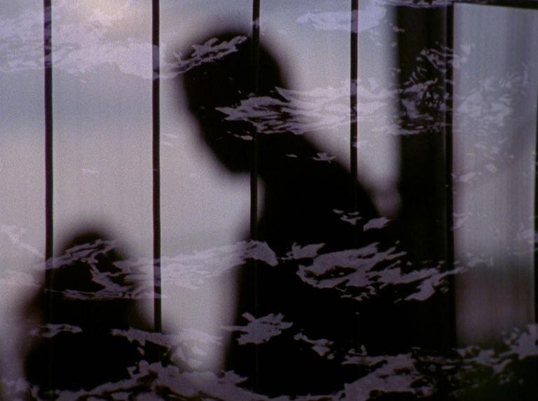 The Liquid Casket/Wilderness of Mirrors